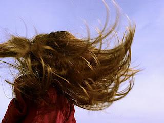 causas caída del pelo, pelo sano