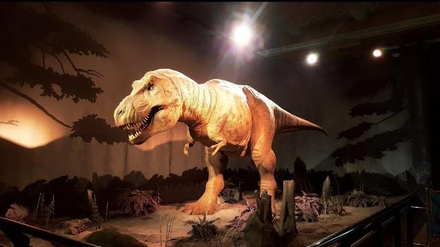 t-rex-londres-museum