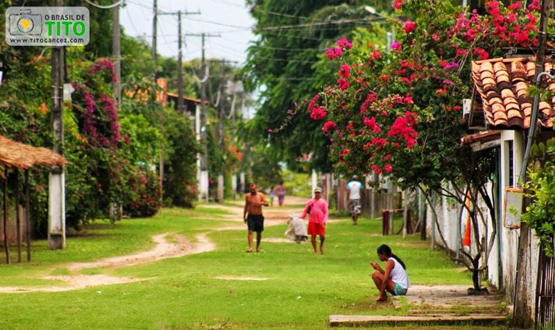 Rua florida na vila do Algodoal, na ilha de Maiandeua, no Pará