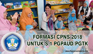 Formasi CPNS 2018 S.1 PGPAUD/PGTK