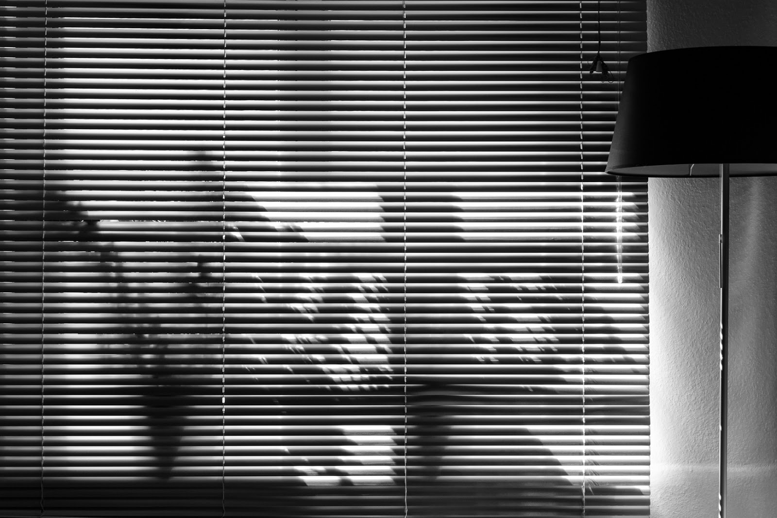 Light time and shadows or we dont see colors we see light black and white photography matthew g beall vision driven photography