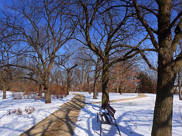 Jeden z warszawskich parków w zimowej odsłonie