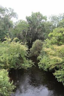 Alafia River