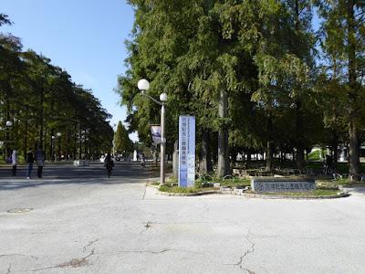 花博記念公園鶴見緑地 中央口 中央通