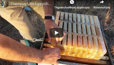 Παραγωγή Μελικεριδίων: Ο Κώστας Παναγιωτίδης στα καλύτερά του Video