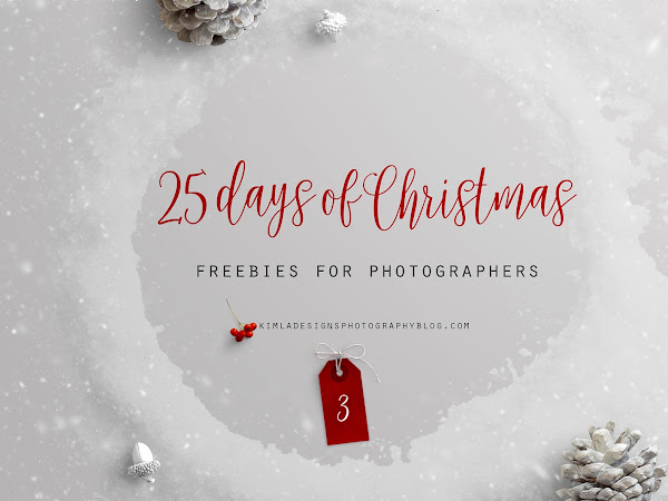25 days of Christmas Freebies for Photographers - Day 3rd