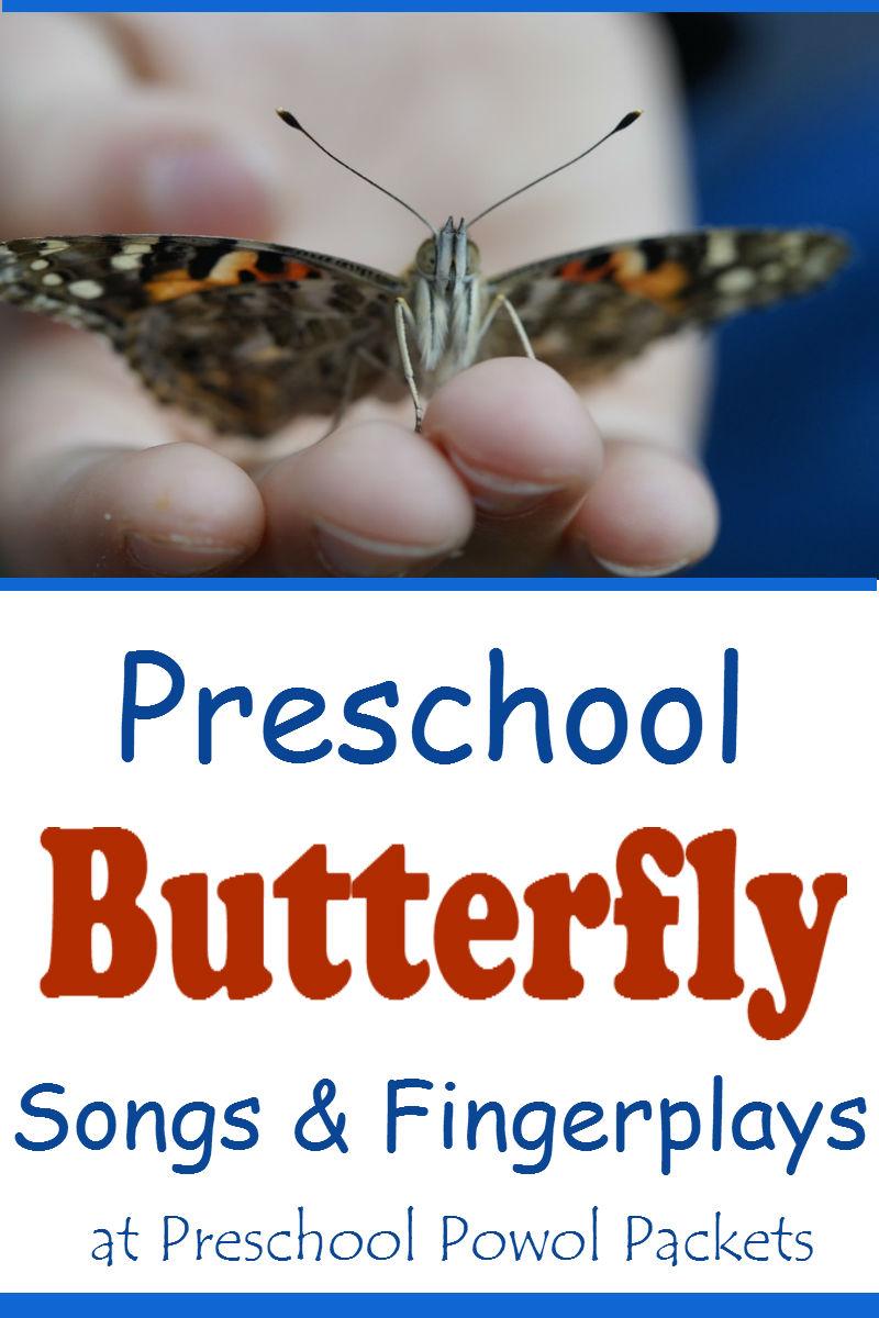 Preschool Butterfly Songs : preschool, butterfly, songs, Preschool, Butterfly, Songs, Powol, Packets