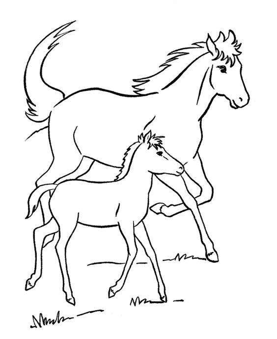 Tranh tô màu hai con ngựa chạy trên đồng cỏ