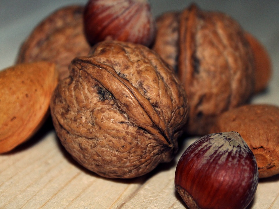Why To Take Nuts In Your Daily Diet? by Mr Great Fitness