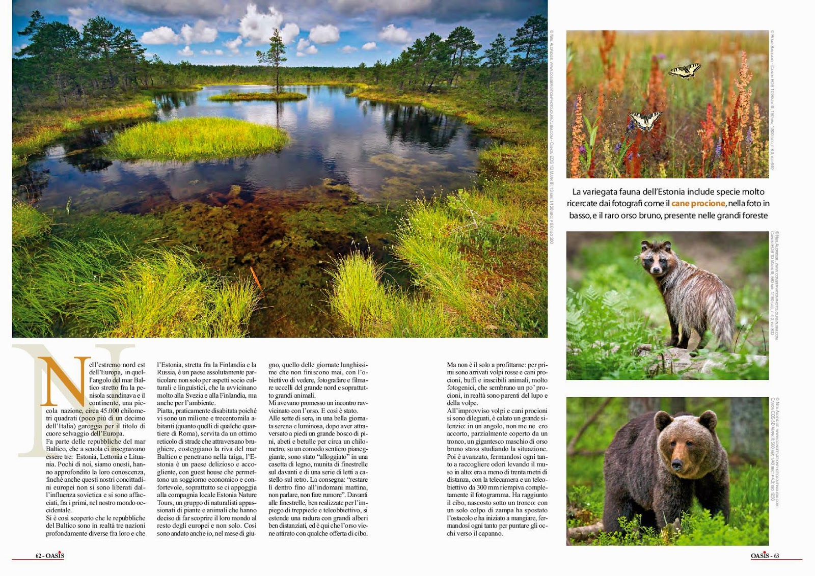 nature article