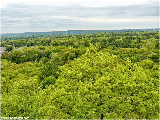 Middlesex Fells Reservation: Vistas desde la Wright Tower