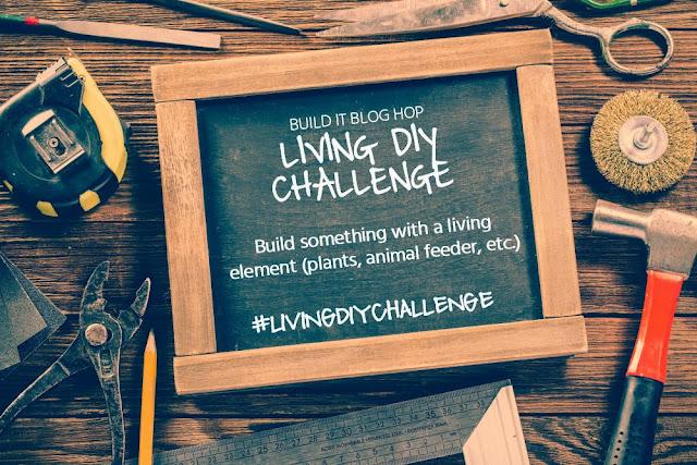 DIY Hexagon Planters for Living DIY Challenge, MyLove2Create