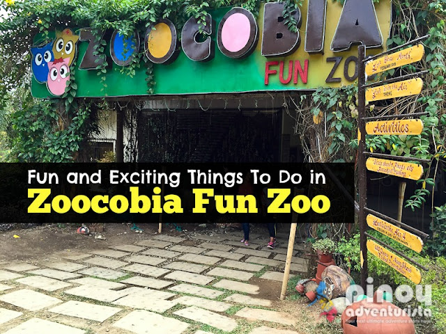 Top 15 Fun and Exciting Things To Do in Zoocobia Fun Zoo You Shouldn't Miss