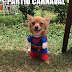 13 Memes incríveis sobre Carnaval