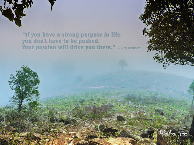 """If you have a strong purpose in life, you don't have to be pushed. Your passion will drive you there."" ― Roy Bennett"