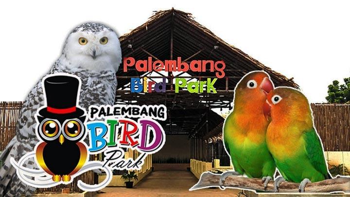 Palembang Bird Park, Tempat Liburan Bersama Anak yang Mengasyikkan