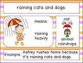Raining Cats And Dogs Idiom Book