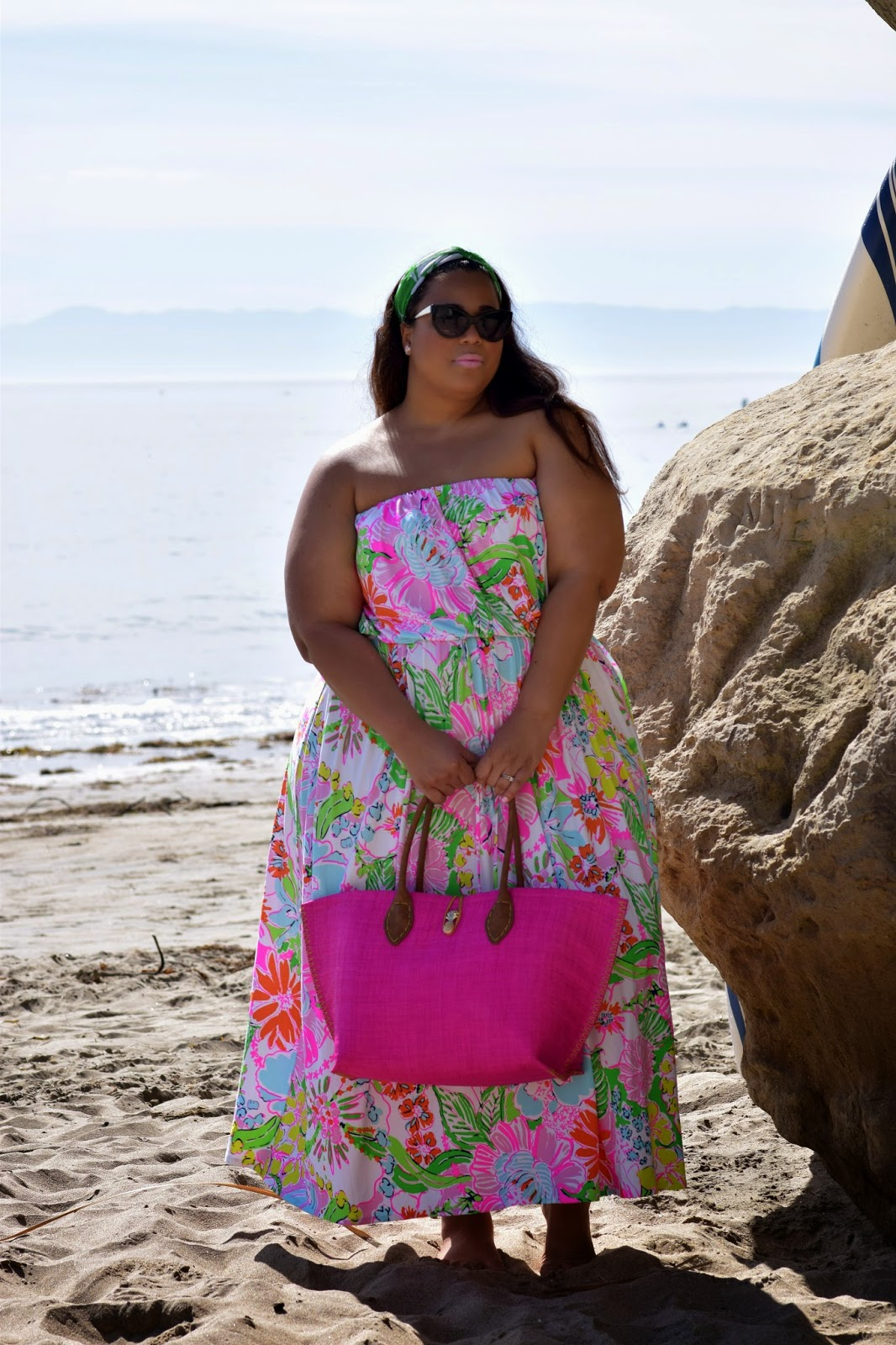 It S A Good Time To Be In The Plus Size Market: Where The Flamingos Come To Roost