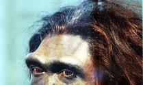 Homo erectus Sejarah Manusia Menurut sejarah