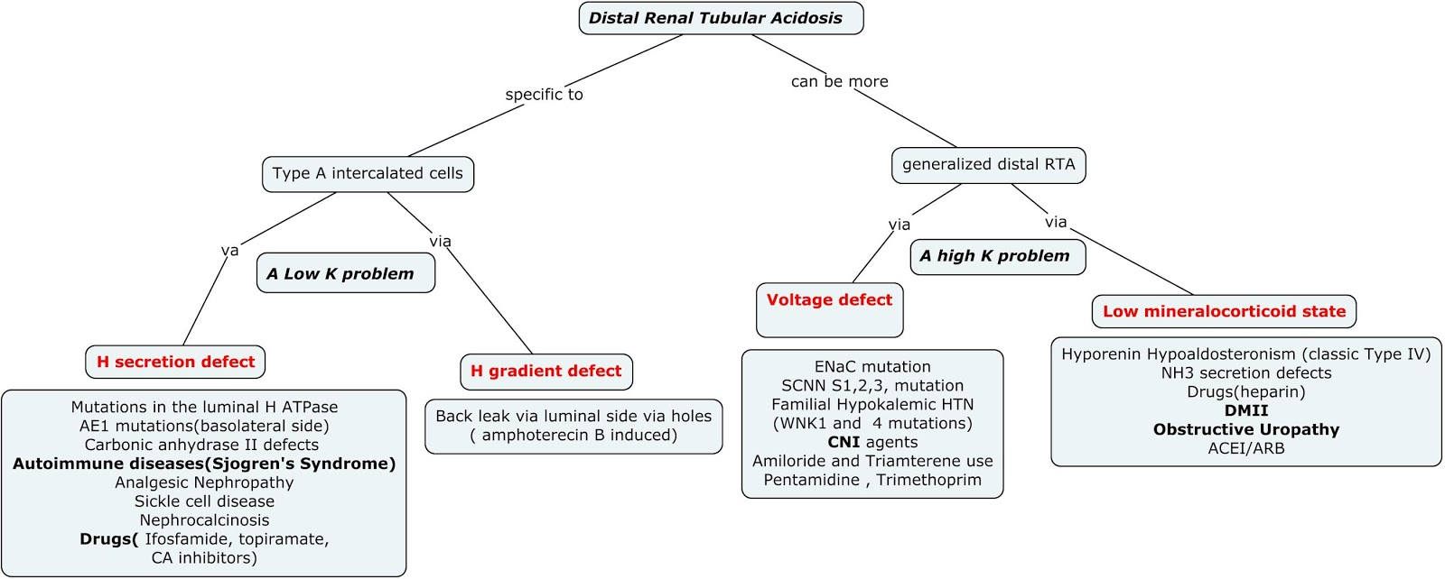 Mutation Concept Map.Nephron Power Concept Map Distal Renal Tubular Acidosis