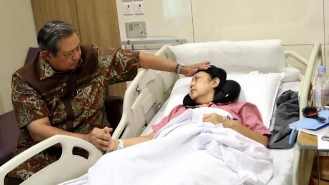 Bagaimana Kekuatan Tim Prabowo Tanpa SBY?