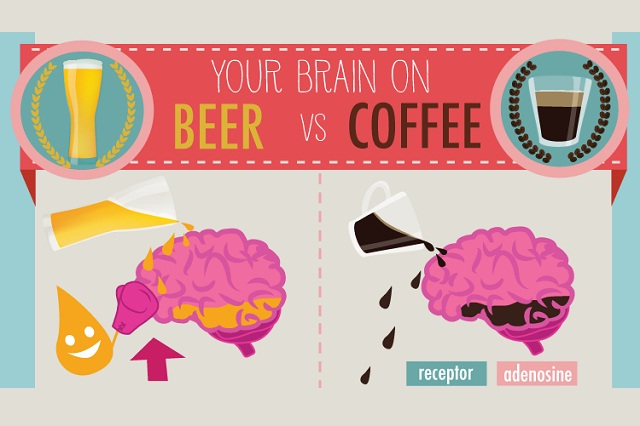 Image: Your Brain on Beer Vs Coffee