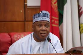 There'll Be No Peace Until Saraki Resigns As Senate President - Senator Loyal To Buhari