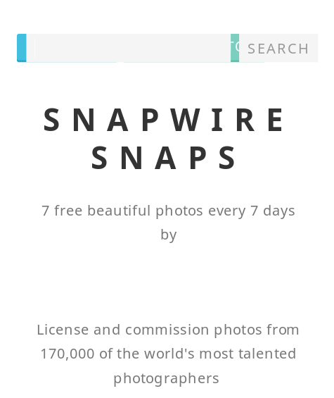 WS Blog Snapwire snaps