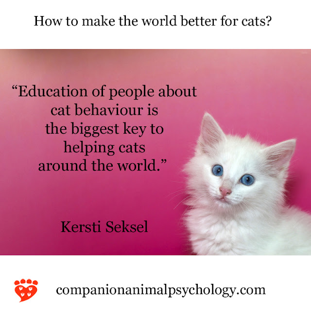 A cute kitten - but to make the world better for cats, we need to educate people on cat behaviour