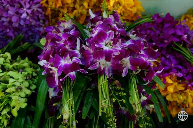 kwiaty bangkok1