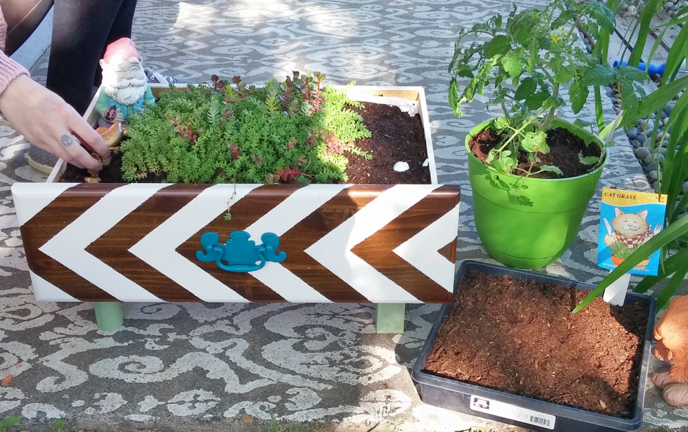 create a cute planter box from an old drawer
