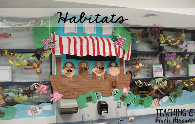 habitats - rainforest bulletin board