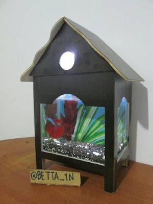 Desain Aquarium Cupang Unik
