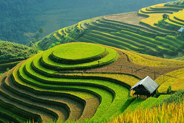 Attractive beauties of Sa Pa Travel