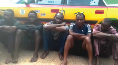 We Only Defraud Greedy People- Suspect