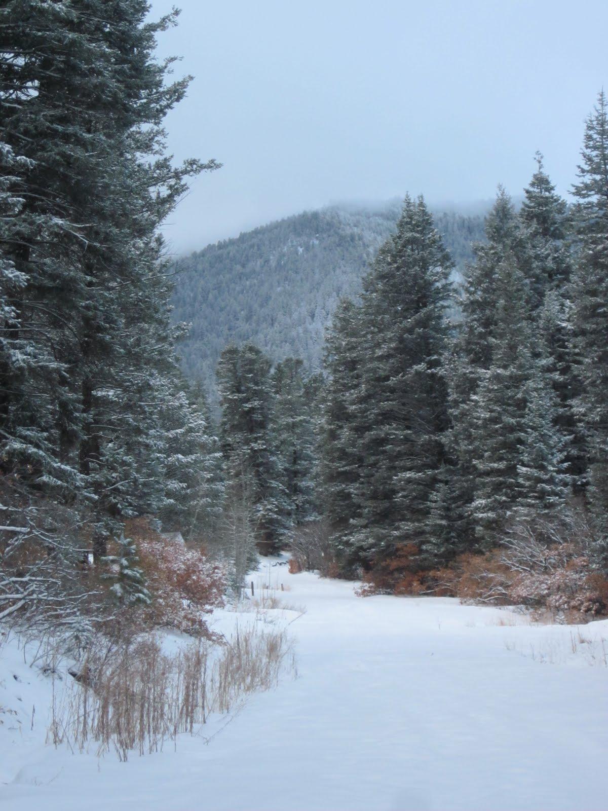 New Mexico Camping Winter Camping