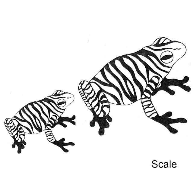 Visual Communication Resource: Design Principle- Scale