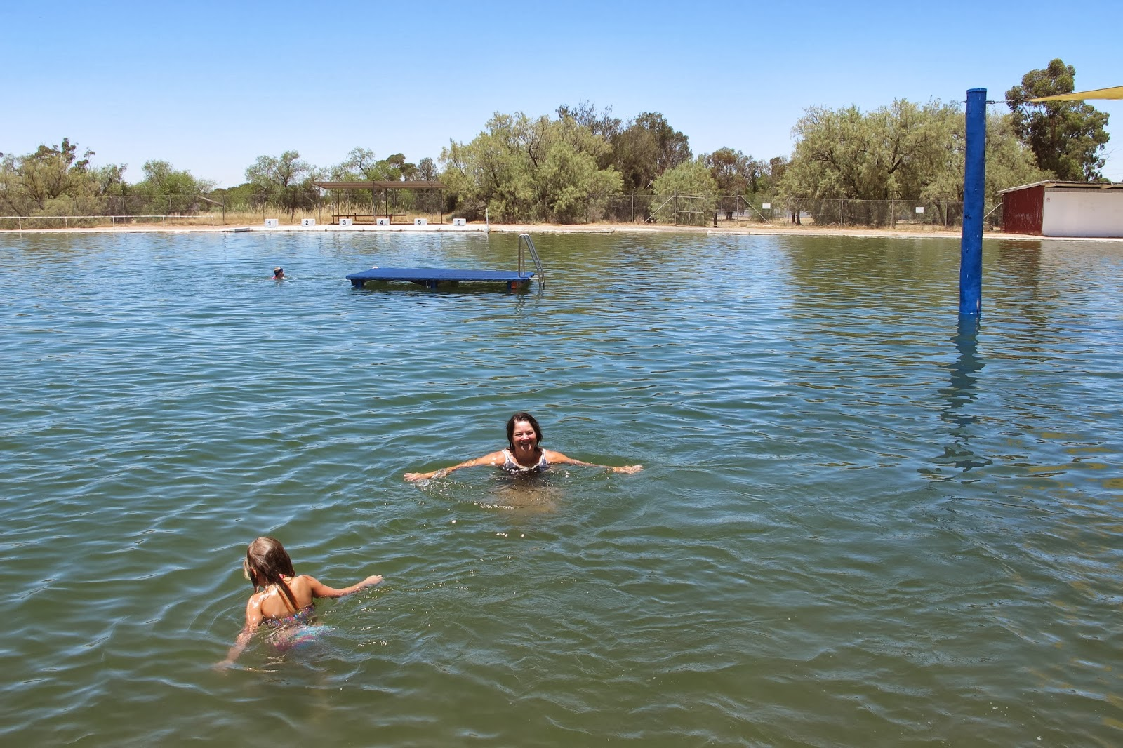 Swimming Swimming Across The Riverina