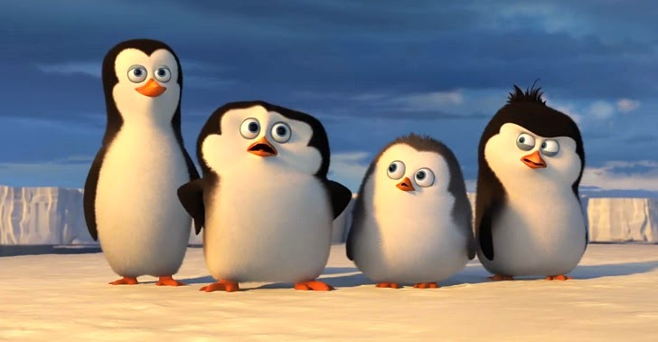 Young Penguins of Madagascar
