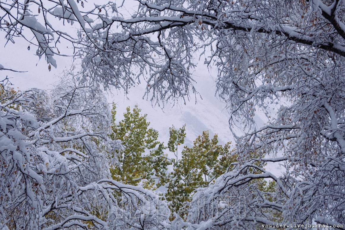 Мёртвый город, затерянный в снежных горах города, город, горах, жизнь, житель, Абдулжалилов, Город, вершине, здесь, Гамсутль, домов, этого, Когдато, Абдулжалил, Кстати, когда, добраться, этаже, затерявшийся, туман