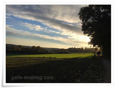 Nachmittagssonne im Herbst