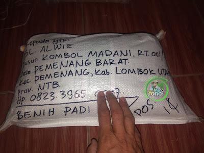 Benih Padi TRISAKTI Pesanan SL ALWIE Lombok Utara, NTB   (Sesudah di Packing)