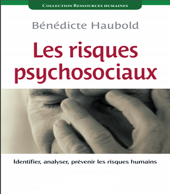 Les risques psychosociaux : Identifier, analyser, prévenir les risques humains PDF