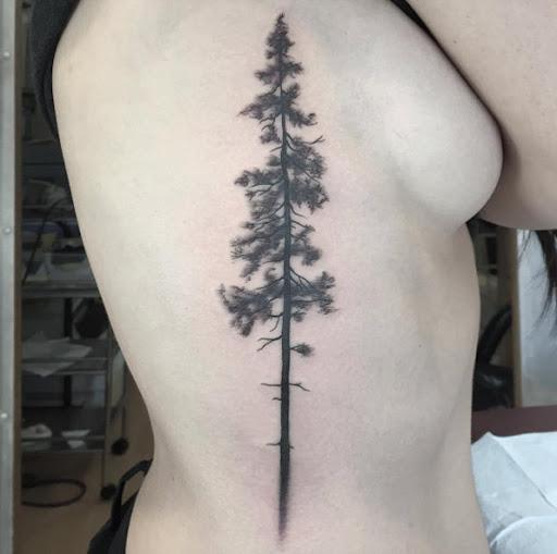 Esta árvore de altura