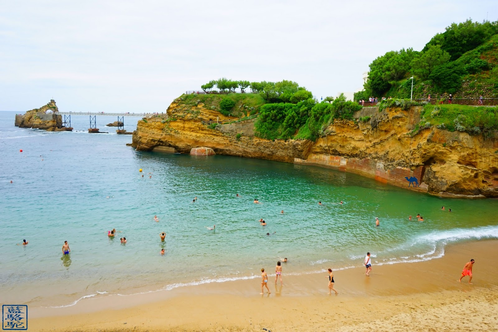 Le Chameau Bleu - La Plage du Port-Vieux - Biarritz BAB