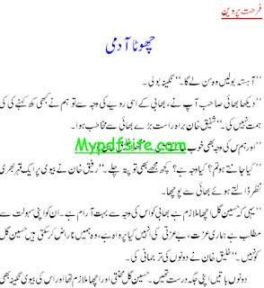 Chota Aadmi By Farhat Parveen