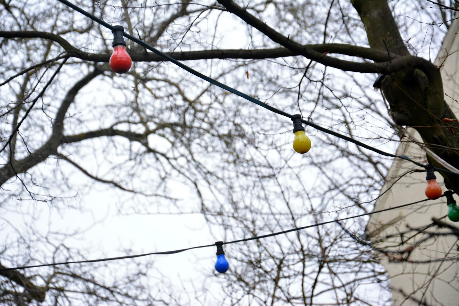 Colourful lightbulbs against branches in the sky