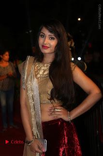 Actress Vennela Stills in Lehenga Choli at Gemini TV Puraskaralu 2016 Event  0042.JPG