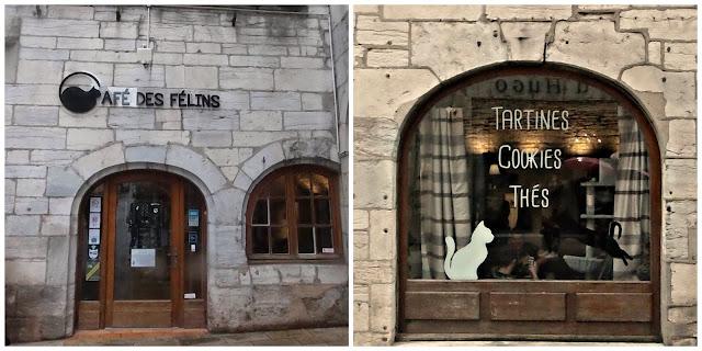 Besançon, bar à chat