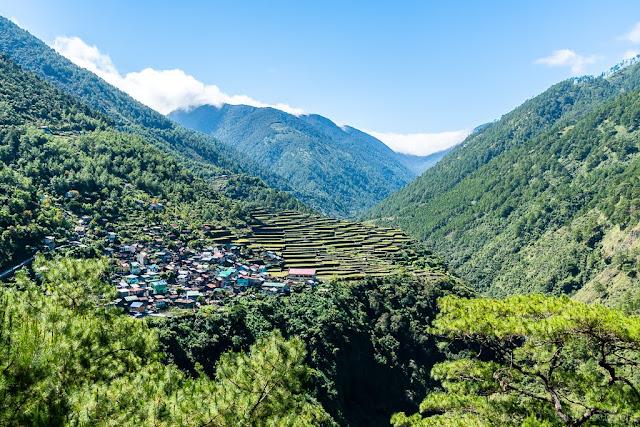 Bayyo rice terraces-Luçon-Philippines